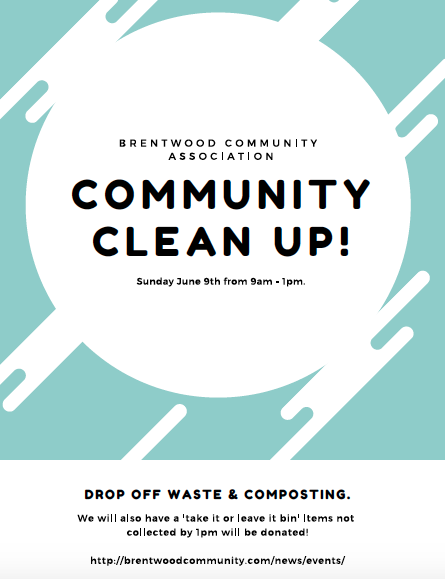Brentwood Community Clean Up 2019