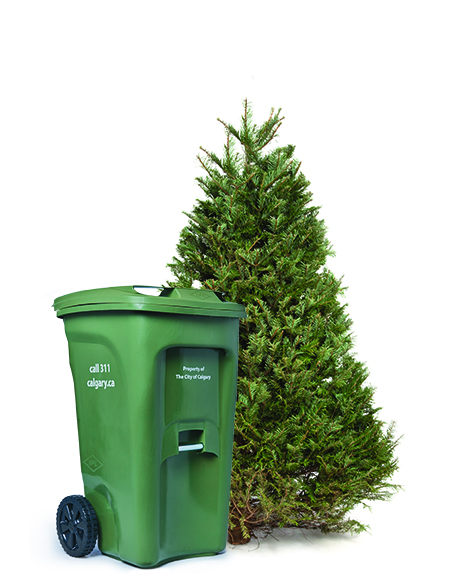 Waste & Recycling Update December 2019