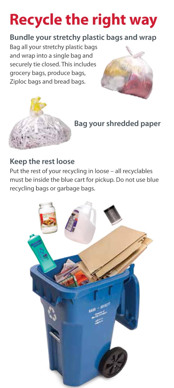 Waste & Recycling Update January 2020